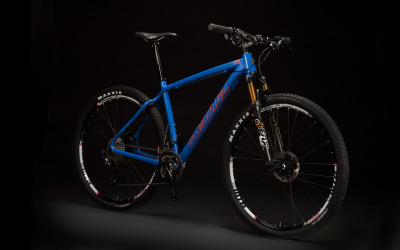 Santa Cruz Highball in Blue & Orange