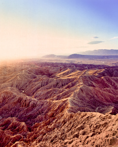 Film Scanning, Anza Borrego, Colorful Things « Ryuhei Edo's Photo Blog