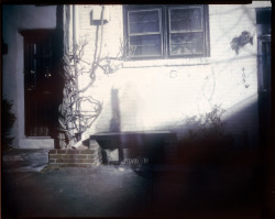 Shadow Bench - 8x10 Pinhole ©Rebecca Adair 2012