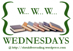 booksandtea:  WWW Wednesdays is a weekly meme hosted by Should Be Reading. To play along, just answer the following three questions:  - What are you currently reading?  - What did you recently finish reading?  - What do you think you'll read next?Click here to see my WWW Wednesday posts, newest at the top.  Ooooh, this is a cool thing that everyone should do. My responses:  Currently reading: Orlando by Virginia Woolf (for class) and The Amazing Adventures of Kavalier & Clay by Michael Chabon (for fun)  Recently Finished: Passing by Nella Larsen  Next Up: A Visitation of Spirits by Randall Kenan