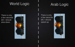 so-phis-ti-ca-tion:  LOL, that's true!   How Arabs see yellow lights