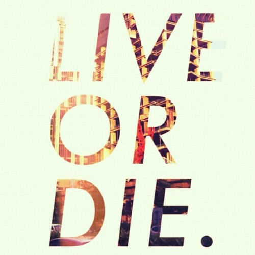 Live or Die.| follow my instagram @roland243