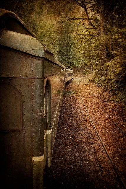 whimsicalepiphany:  Lake Whatcom Railway by EdBob on Flickr.