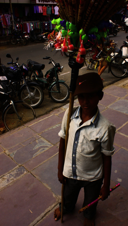 Piper Kid, Pondichery, India 2011