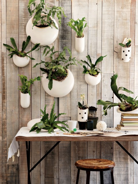 Bring the outdoors in all year round with wall planters, like these garden vessels from West Elm (via West Elm)