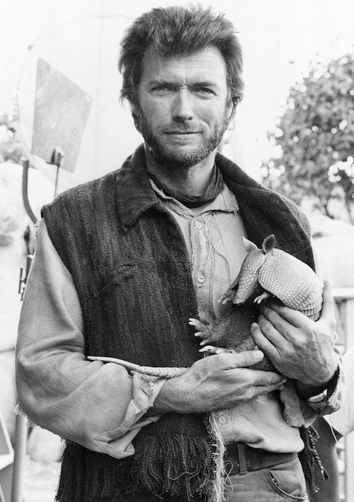 Hi, I'm Clint Eastwood, and I approve this armadillo - Imgur