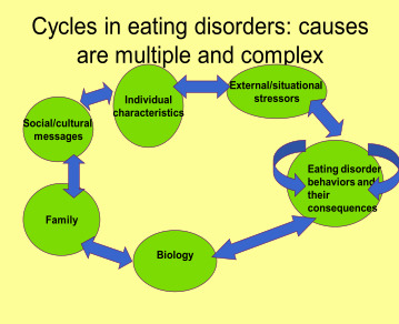 eating disorder informative essay