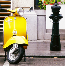 modcloth:  Love this vibrant yellow scooter.