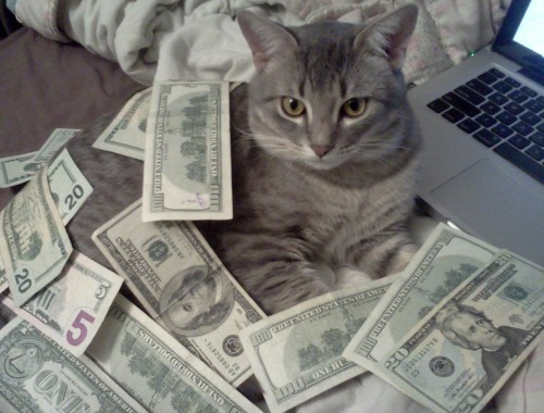 cashcats:    MAKE $$$$ FROM HOME CALL 1900CATCA$H RITE MEOW