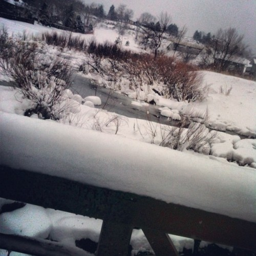 #fromwhereiski #snow #fun #winter #bridge (Taken with instagram)