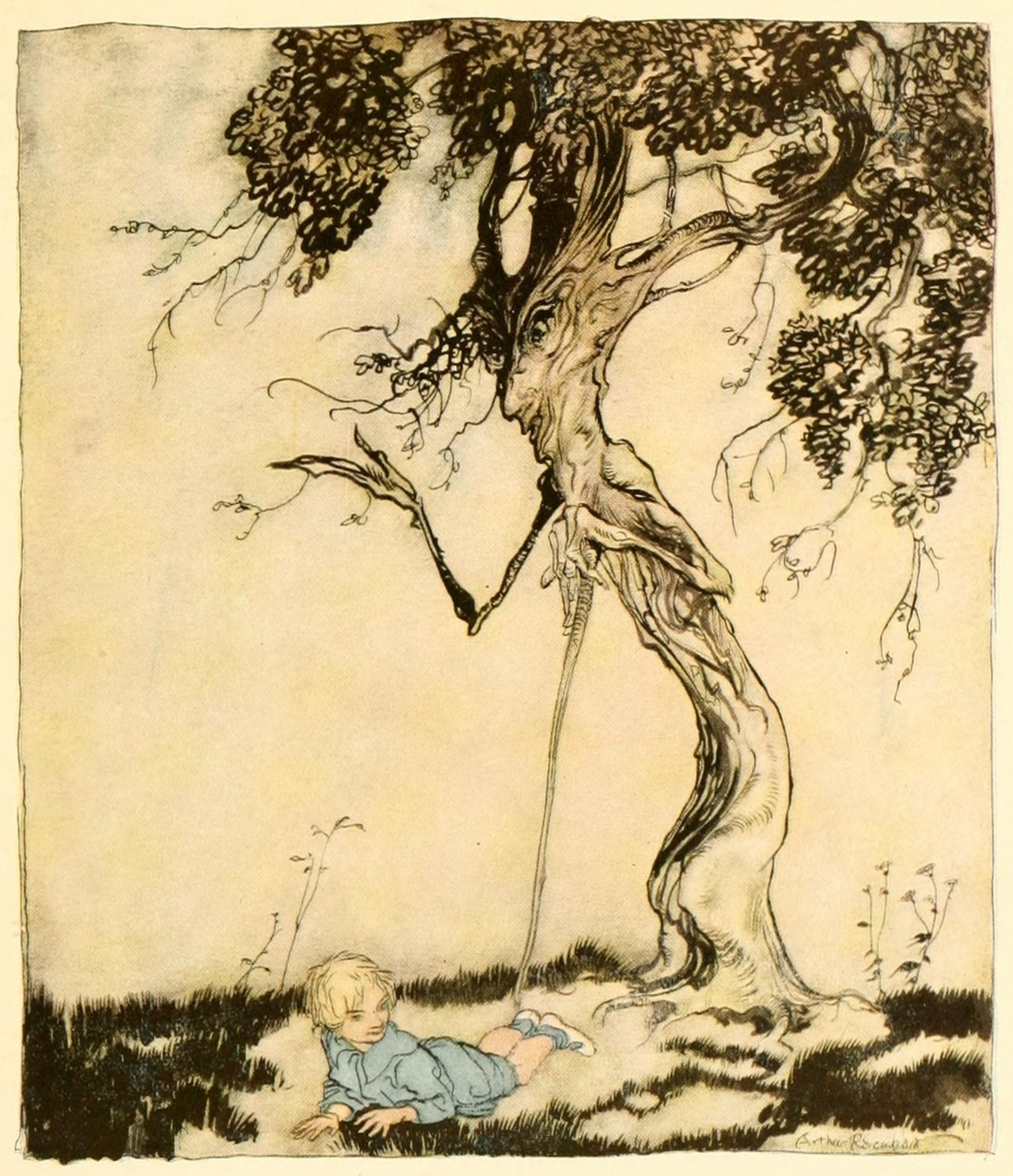 Arthur Rackham ~ The Little Boy and Old Man Tree ~ 1919 ~ via