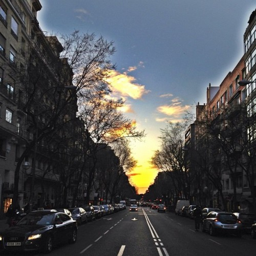 #Sunset in the city. #madrid #Spain #photooftheday #instawow #instapurfect  (Taken with Instagram at Calle José Ortega y Gasset)