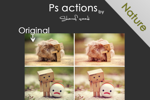 resources4u:  photoshop actions - 1 by *Honestheart26