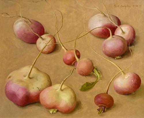 Eliot Hodgkin Pink and White Turnips 1971