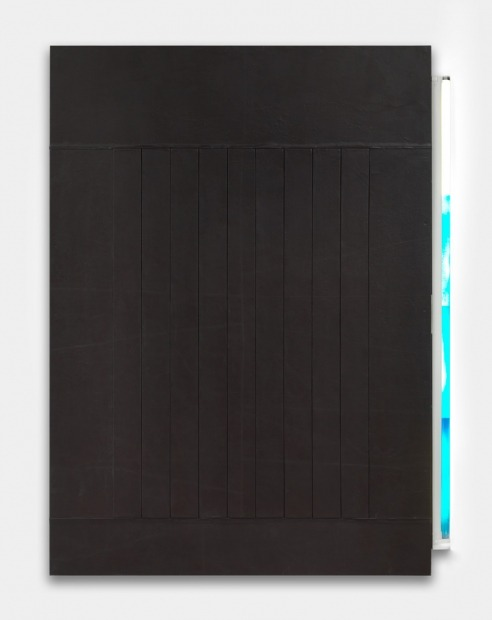 Untitled, 2012_Matthias Bitzer artificial leather and neon tube