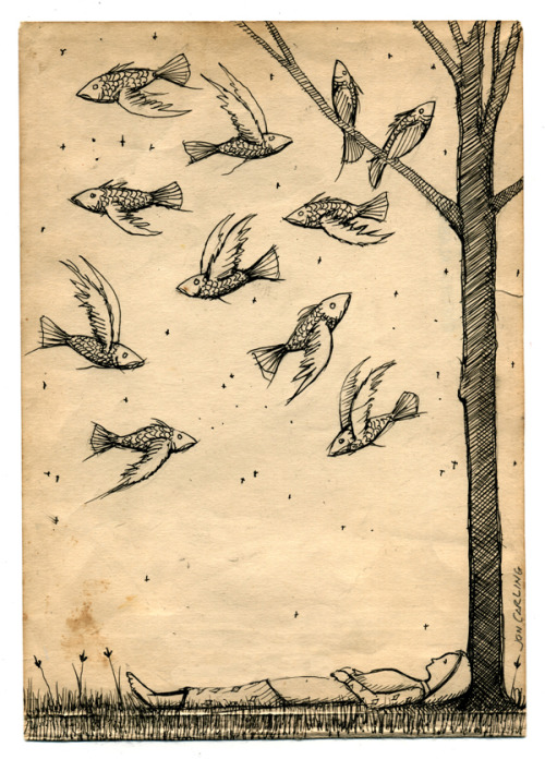joncarling:  'Perfect day'