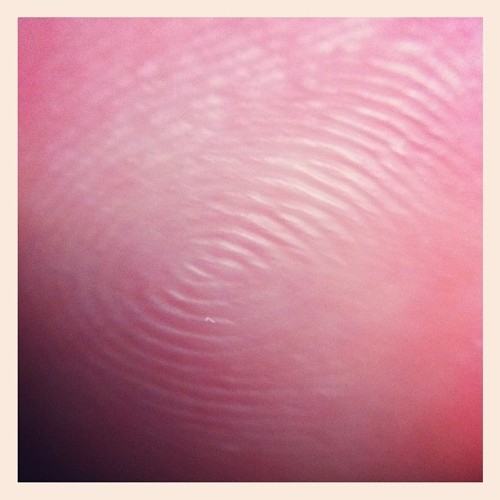 Fingerprint  (Taken with instagram)