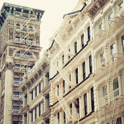 evysinspirations:  Ornamentalism (by IrenaS) New York City, New York, USA