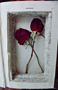 Secret compartment hollow book with roses