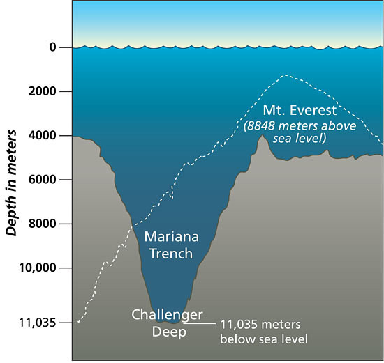 Mariana Trench: Take a virtual dive 11,000m down