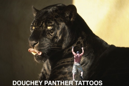 Douchey Panther Tattoos