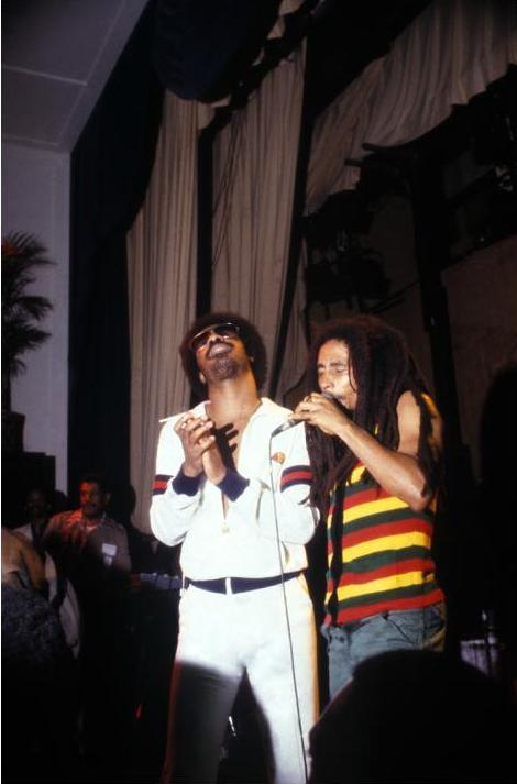 tornandfrayed:  Stevie Wonder and Bob Marley, by Kwame Brathwaite.