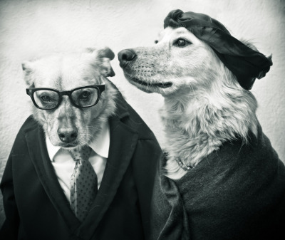 petitessedespassions:   Simone de Beauvoir and Jean Paul Sartre as dogs
