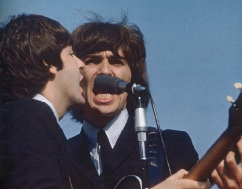 tragicalhistorytour:August 20th, 1965  Paul and George close in for a harmony during their performance in Chicago.