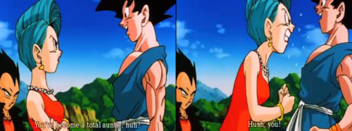 "So… I been watching DBZ in Jap with English subs…. Oh man! It's sorta different…. I've finally crossed the ditch and I actually enjoyed it :P  Some stuff is hilarious… like this for instance! Goku calling Bulma and auntie rather than ""middle-aged."" I don't know… But that is a LOT funnier than simply putting it as middle-aged… haha!!!! ""Bulma… you've become a total auntie,"" (mentally I was like.. Son-kun!!! How could you!!!? So rude!)"