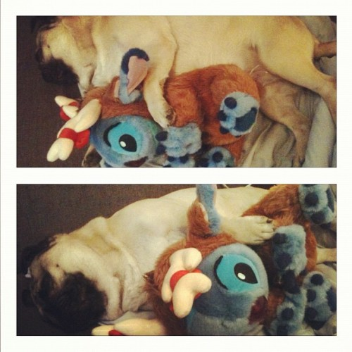 Bazoo and Stitch 💤 (Taken with instagram)