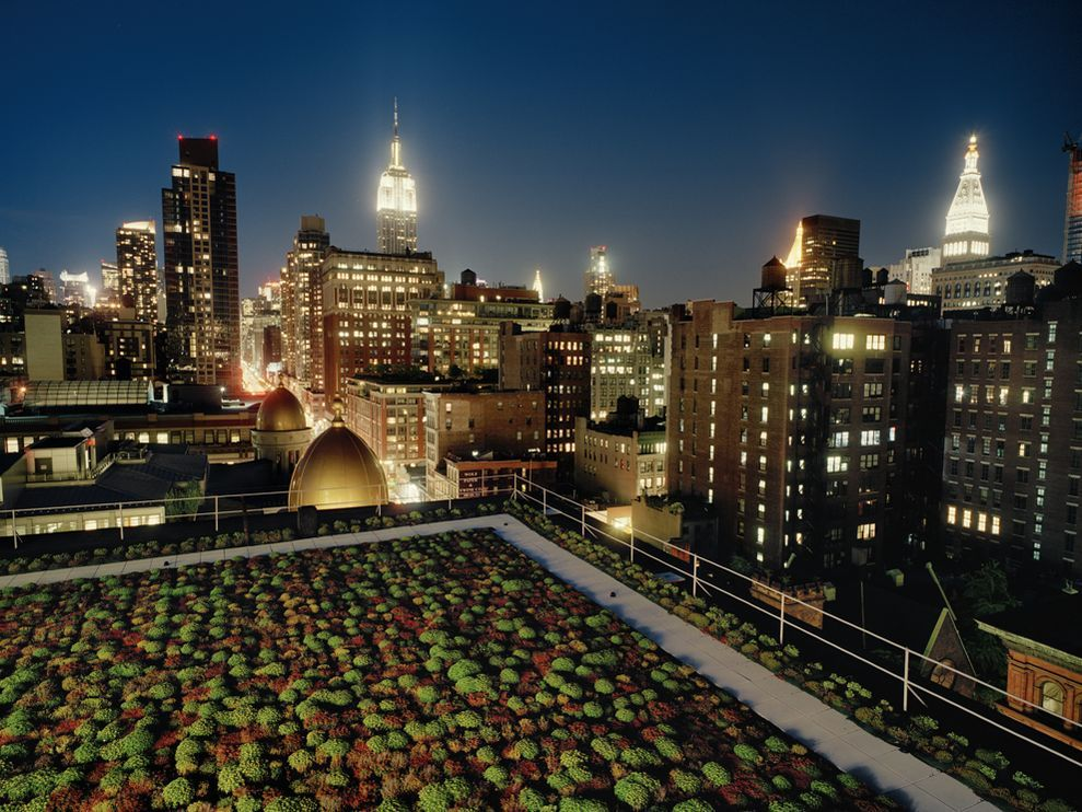 Green Roof, New York City Photograph by Diane Cooke and Len Jenshel