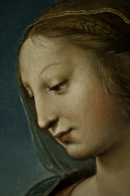 artemisdreaming:  RaphaelThe Niccolini-Cowper Madonna, 1508Andrew W. Mellon Collection1937.1.25 nga.gov .                                      . The Large Cowper Madonna or popularly known as Niccolini-Cowper Madonna is a painting which portrays Mary and child against a blue sky. It was painted by Raphael in 1508. The painting is now located at the National Gallery of Art in Washington, D.C. It was the last painting he executed in his Florentine period. The painting shows the image of the closeness of the Virgin and the child through the positions of the figures. It was believed that Raphael adapted the talent for making figures show the intimacy between one another from Leonardo Da Vinci's works. It was later known that the painter studied Da Vinci's via: totallyhistory