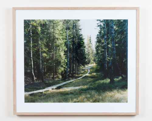 Framed print part of the SNOW exhibition at Galerie   Baudoin Lebon in Paris, January 2010. Picture from First Frost series taken in Oslo,  Norway in 2009. C.print  mounted on aluminium with maple frame. Dimensions of frame :   71x61,5cm. Signed, ed. 1/3. Each 1750$/1600€. informations : thomashumery@gmail.com