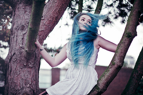 porcellina:  rodinesque:  silent mermaids climbed the trees II (by Ailera Stone)  (via imgTumble)