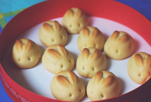 manicscribble:  Bread bunnies. You guys. Bread Bunnies  I really think that I wouldn't eat these at first because I'd be sad about eating cute little bunnies.  Then, those feelings would pass and I'd pretend to be a tyrannosaurus rex capitalizing on this era's small, weaponless mammals.