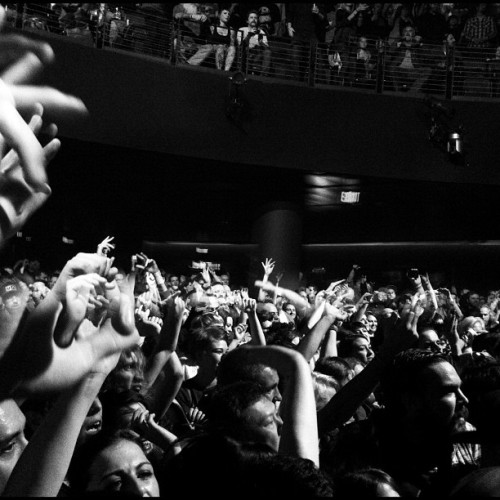 #dieantwoord #crowd  (Taken with instagram)