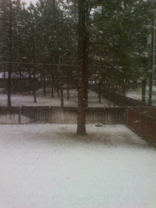Wow, only in spokane.. & two days before track season.  #TFIsThis