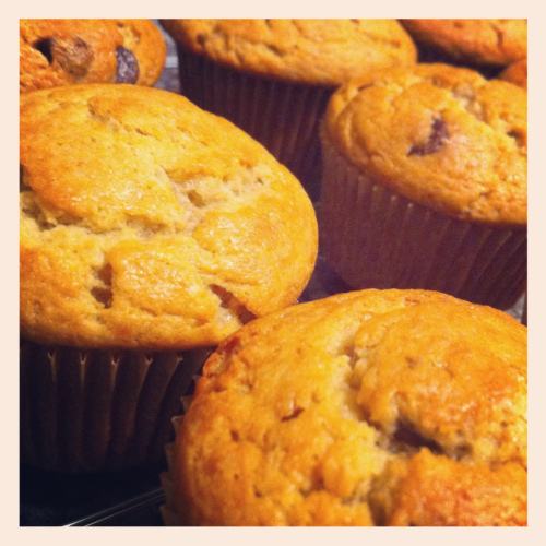Super Moist Banana Chocolate Chip Muffins  I baked these last night so we could have them as nice addition to our breakfast today. The recipe is adapted from one of my favorite banana bread loaf recipes of Martha Stewart's.      Ingredients:      1 stick butter, at room temperature      1/2 cup granulated sugar      1/2 cup light brown sugar      2 large eggs      1 1/2 cups unbleached flour      1 teaspoon baking soda      1 teaspoon salt      3 very ripe bananas       1/2 cup sour cream      1 teaspoon vanilla      1/2 cup semi sweet chocolate chips  Preheat oven to 350 degrees. Paper line a muffin pan and set aside. Cream butter and sugar together until it becomes light and fluffy mixture. Add eggs, and beat to incorporate.  In a medium bowl, whisk together flour, baking soda, and salt. Add to the butter mixture, and mix until just combined.  Mash bananas to a nice pulp- I like to just slice them and pulse them in my smoothie blender with the sour cream and vanilla to get a nice smooth  texture for my muffins. If you don't have  a blender of some sort, you can just mash the bananas by hand and add  sour cream, and vanilla; mix to combine. Fold in chocolate chips, you can more than 1/2 cup if desired and pour into prepared muffin pan. This recipe makes exactly a dozen muffins.  Bake for 35 min or until golden brown.  Let rest in pan for 10 minutes, then turn out onto a rack to cool completely.