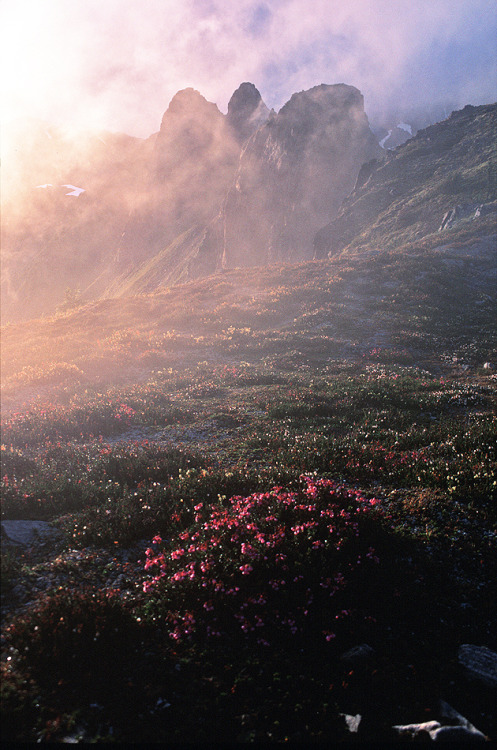 10knotes:  Misty Ridge (by justb) Follow this blog, you will love it on your dashboard