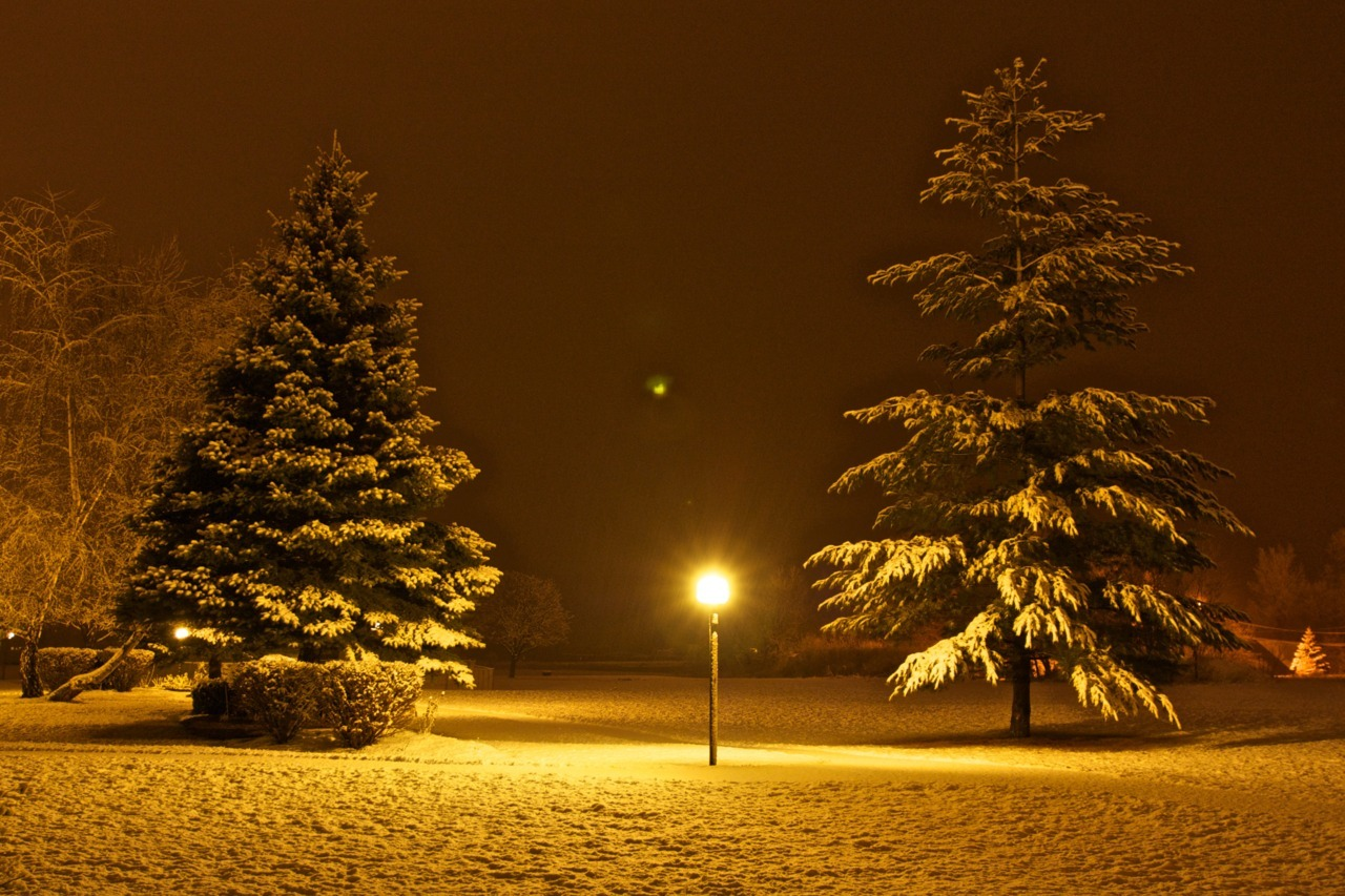 Snowy Night. Clayton, New York. United States.
