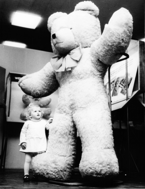 A little girl from Brighton with her 6 ft. tall Teddy Bear (1968)