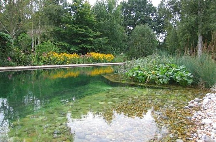withtherainfall:  breathemystardust:  relright:  natural swimming pools uses plants to filter the water instead of chemicals  this is awe~mazing…we will have one of these…  omg want