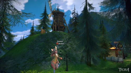 I am enjoying Tera a bunch! It is not the normal MMO feel which is a great change. The beta is very polished for where it is so I can expect a lot of good things from the game. Currently I am playing an Elin Archer. Archers seem to be rather good DPS and can do great AoE DPS when in a group. I haven't been able to play with the other classes but I do plan on making a warrior.