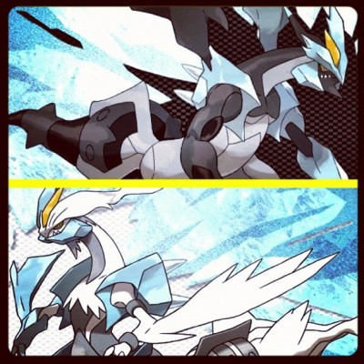 Shatter Spirit #thisismypicktoday #pokepick #Pokémon #unova #instagram #ignation #instamood #boundary #tao #ds #3ds #dragon #battle #gridlens #mythical #legendary #pokedex #igeire # #Teravolt #peaceout #igaddict #Kyurem #Reshiram #Zekrom (Taken with instagram)