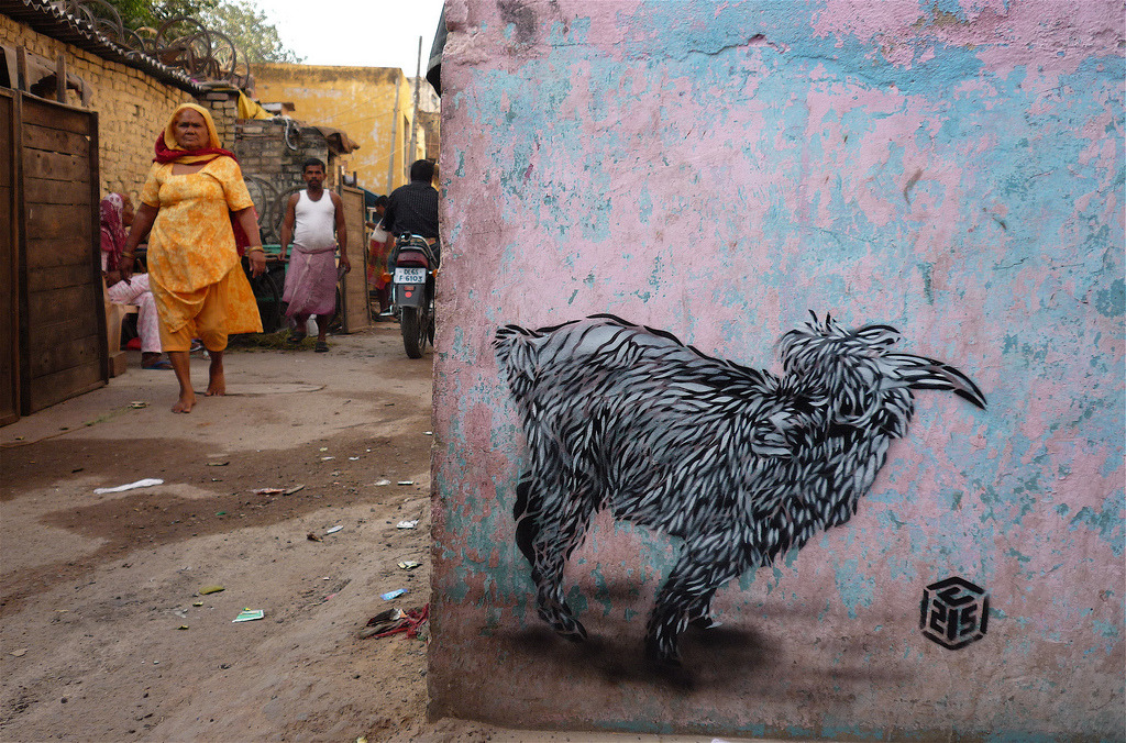 Stencil street art by French artist C215 in New Delhi, 2008 (photo by Romany WG)