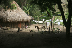 A Kogui home. The other, larger indigenous tribe that lived across the river from the Haruaco (who I worked with). The Haruaco has roughly 3,000 people. The Kogui is much larger.