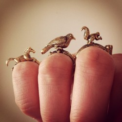 truebluemeandyou:  Animal Rings. Not a DIY, but I love these. From an Instagram Photo by Studiobomba here. Has anyone seen these before?