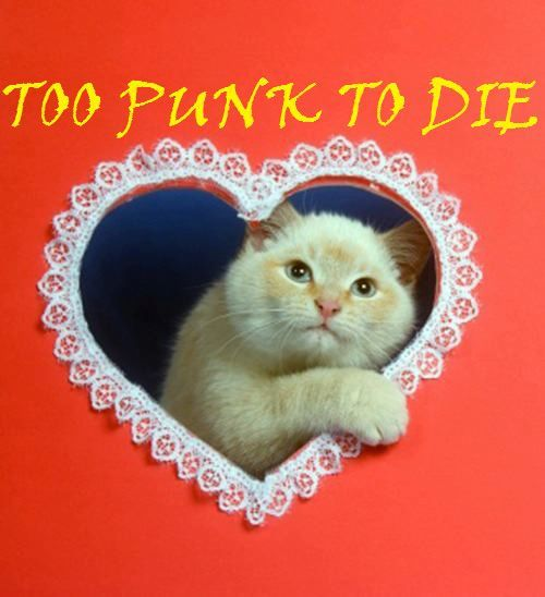 too punk to die.