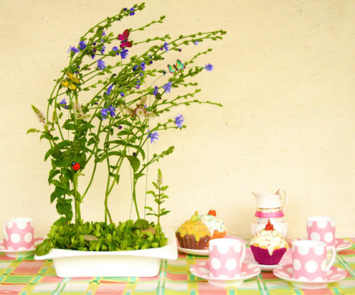 (via Summer's End Tea Party: floral table centrepiece ~ spider flower) grow your own centerpiece