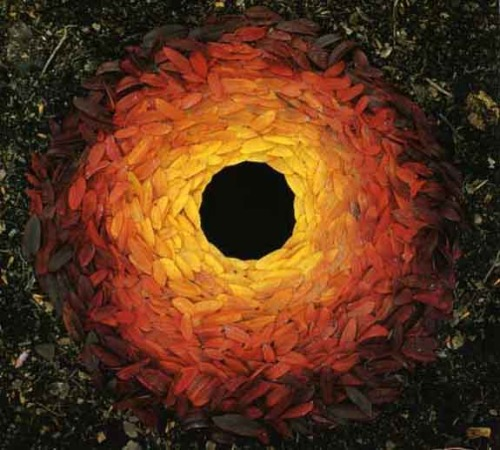 Amazing work by Andy Goldsworthy (1956-) which is made from all natural elements and is often ephemeral…